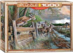 Abandoned Farm Deer Jigsaw Puzzle