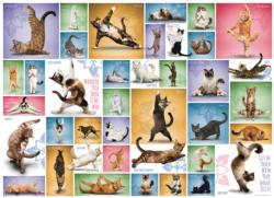 Yoga Cats Collage Impossible Puzzle