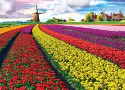 Tulip Field - Netherlands Flowers Jigsaw Puzzle