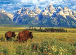 Grand Teton National Park - Scratch and Dent National Parks Jigsaw Puzzle