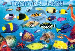 Tropical Fish Fish Children's Puzzles