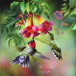 Summer Hummer - Scratch and Dent Flowers Jigsaw Puzzle