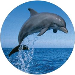 Bottlenose Dolphin Dolphins Round Jigsaw Puzzle