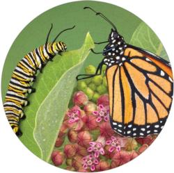 Monarch Butterfly Puzzle A•Round Butterflies and Insects Round Jigsaw Puzzle