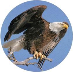 Bald Eagle Puzzle A•Round: Eagles Round Jigsaw Puzzle