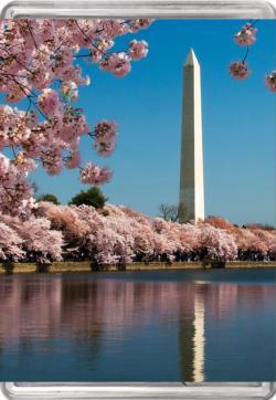 Washington Monument MiniPix® Puzzle United States Miniature Puzzle