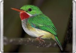 Puerto Rican Tody MiniPix® Puzzle Birds Miniature Puzzle