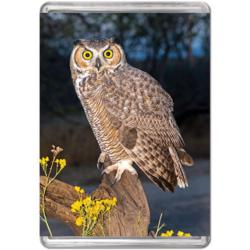 Great Horned Owl (Mini) Owl Miniature Puzzle
