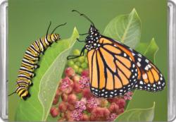 Monarch Butterfly MiniPix® Puzzle Butterflies and Insects Miniature Puzzle