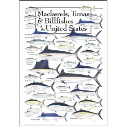 Mackerels, Tunas & Billfishes of the US Fish Jigsaw Puzzle