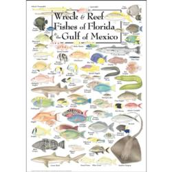 Wreck & Reef Fish of Florida & the Gulf of Mexico Fish Jigsaw Puzzle