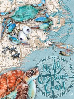 North Carolina Coast Maps / Geography Jigsaw Puzzle