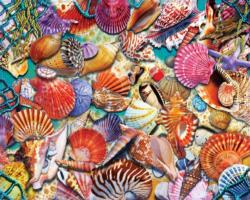 Coastal Shells Beach Jigsaw Puzzle