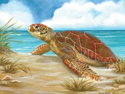 Perfect Spot Turtles Jigsaw Puzzle