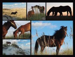 Wild Horses Horses Jigsaw Puzzle