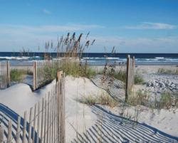 Wild Dunes Beach Jigsaw Puzzle