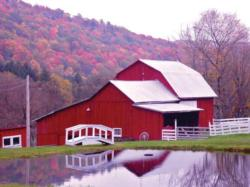 Red Barn Reflections Farm Jigsaw Puzzle