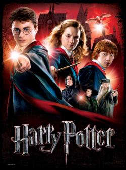 Hogwarts School Harry Potter 3D Puzzle