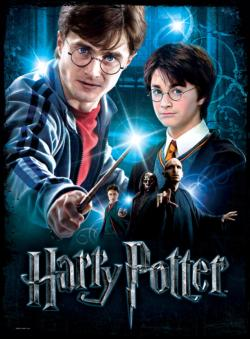 Harry Potter Harry Potter 3D Puzzle