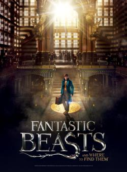 Fantastic Beasts: Macusa Movies / Books / TV 3D Puzzle
