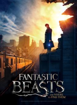 Fantastic Beasts: New York City Harry Potter 3D Puzzle