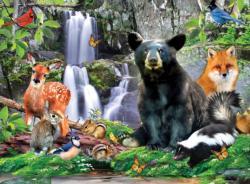 Shenandoah National Park National Parks Jigsaw Puzzle