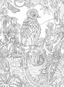 Quetzal Birds Jigsaw Puzzle
