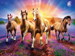 Wild Stallions Horses Large Piece