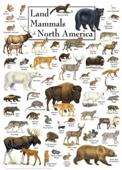 Land Mammals of North America Wildlife Jigsaw Puzzle
