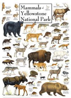 Mammals of Yellowstone National Park National Parks Jigsaw Puzzle