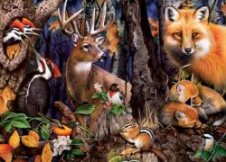 Forest Gathering Forest Jigsaw Puzzle