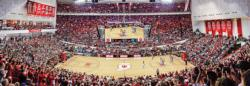 Indiana University Sports Panoramic Puzzle