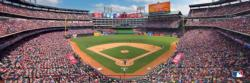 Texas Rangers Baseball Panoramic Puzzle