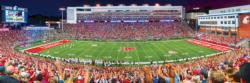Washington State Sports Panoramic