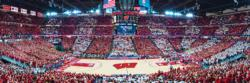 Univeristy of Wisconsin Basketball Sports Panoramic Puzzle
