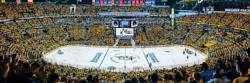 Nashville Predators Sports Panoramic Puzzle