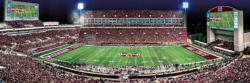 Mississippi State Football Panoramic Puzzle