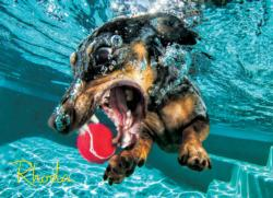 Underwater Dogs:  Rhoda Photography Jigsaw Puzzle