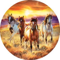Running in the sun Sunrise/Sunset Jigsaw Puzzle