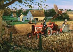 Field of Plenty (Farmall) Farm Jigsaw Puzzle
