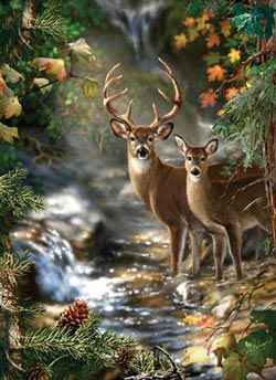 Peek Season - Deer Creek Wildlife Jigsaw Puzzle