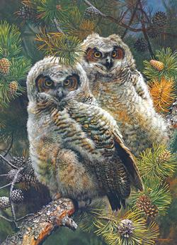 Hidden in the Pines Wildlife Jigsaw Puzzle