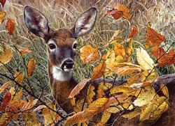 Autumn Lady Wildlife Jigsaw Puzzle