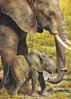 African Elephant (Animal Planet) Baby Animals Jigsaw Puzzle