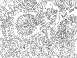 Garden Garden Coloring Puzzle