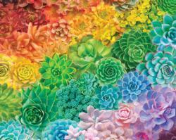 Succulent Rainbow Flowers Large Piece