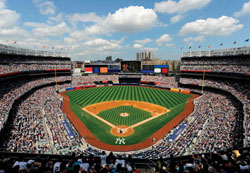 New York Yankees Jigsaw Puzzle