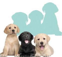 Labrador Puppies Dogs Shaped Puzzle