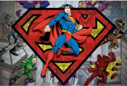 Superman & Villains Super-heroes Jigsaw Puzzle