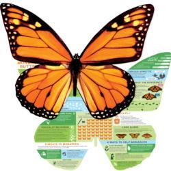 Monarch Info Educational Multi-Pack